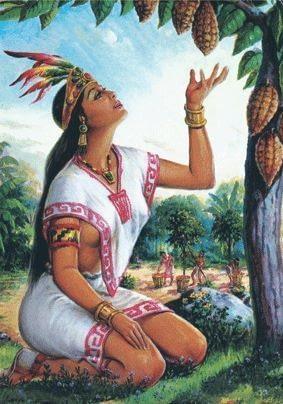 瑪雅文明可可果實