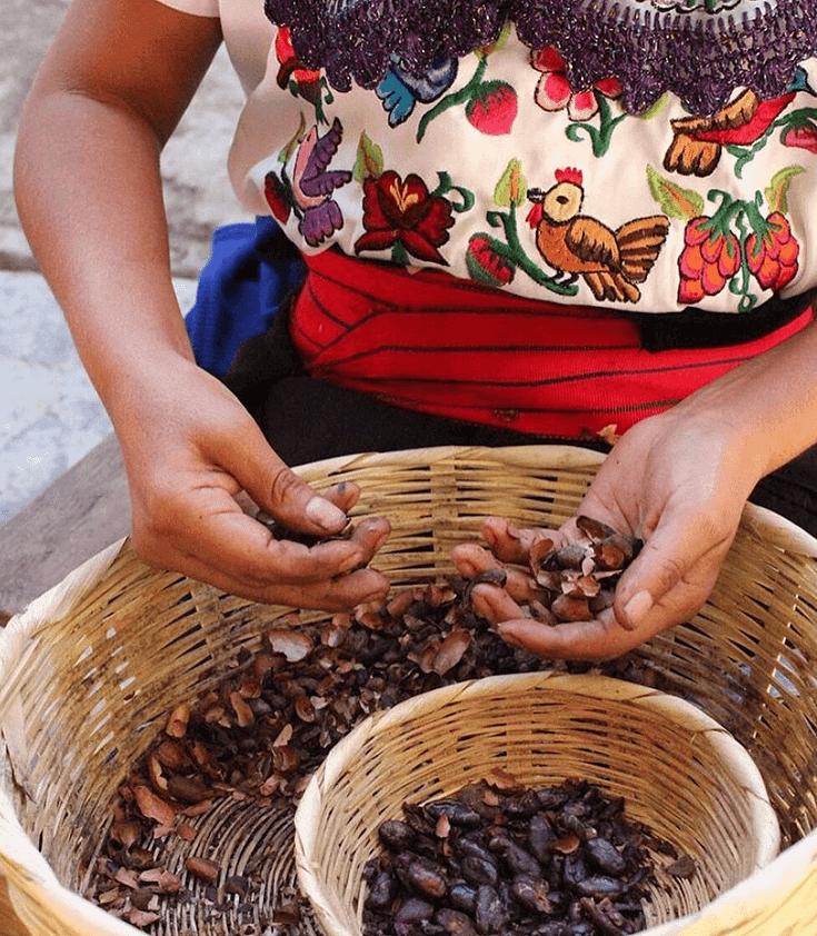 瑪雅巧克力草藥功效